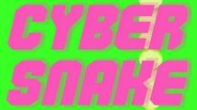 http://gamejolt.com/games/cyber-snake/23456